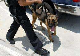 A police officer and a bomb sniffing dog inspect a car in Los Angeles in 2002