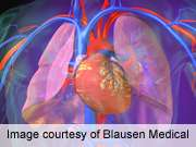 Arterial stiffness inversely tied to plasma adiponectin levels