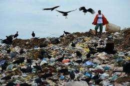 A scavenger digs through trash at the Jardim Gramacho landfill in Rio de Janeiro