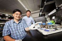 Bringing down the cost of fuel cells