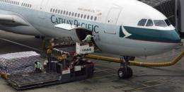 """""""Cathay Pacific has decided to stop shipping unsustainably sourced sharks and shark-related products,"""" the airline said"""