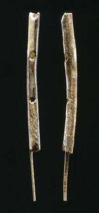 Earliest musical instruments in Europe 40,000 years ago