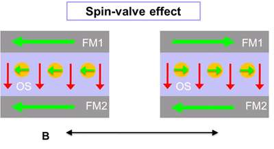Electron spin transport demonstrated for first time in an organic device