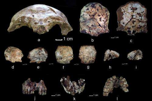 Lao skull earliest example of modern human fossil in Southeast Asia