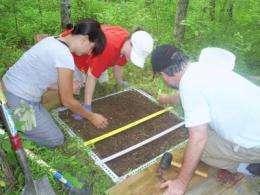 Final FACE harvest reveals increased soil carbon storage under elevated carbon dioxide