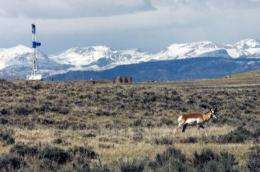 Gas development linked to wildlife habitat loss