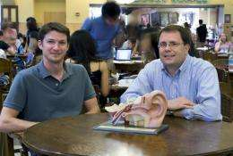 Hearing impaired ears hear differently in noisy environments