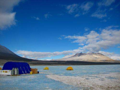 Hearty organisms discovered in bitter-cold Antarctic brine