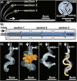 Harvard researchers develop new kind of soft robotic gripper