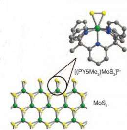 Hydrogen from acidic water: Researchers develop potential low cost alternative to platinum for splitting water