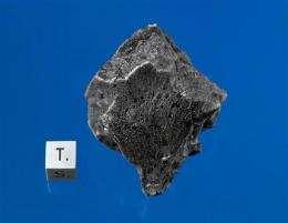 Mars rocks fell in Africa last July