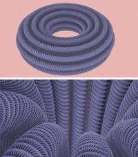 Mathematics : first-ever image of a flat torus in 3D