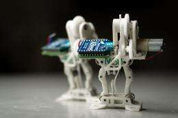 More bounce to the ounce: Mini-robot attracts attention