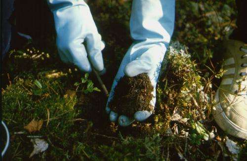 Scientist develops a test method for the measurement of soil microbial diversity