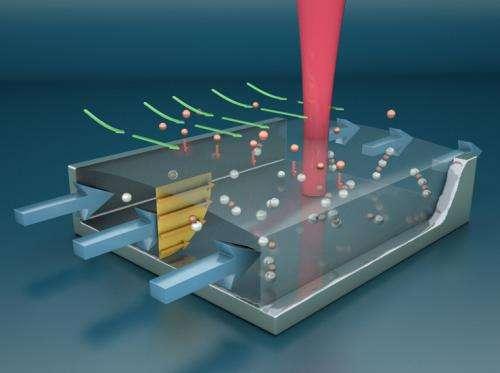 Nanotech device mimics dog's nose to detect explosives