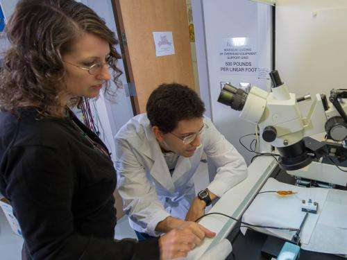 NASA innovator hunts for extraterrestrial amino acids