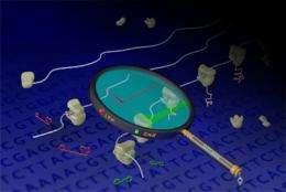 New method helps researchers decode genomes