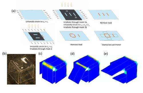 Researchers fold origami with light