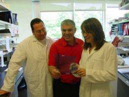 Promising tool to combat cachexia-induced muscle wasting discovered