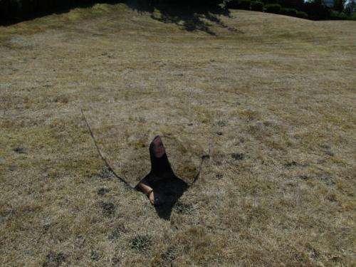 Quantum Stealth material renders target invisible