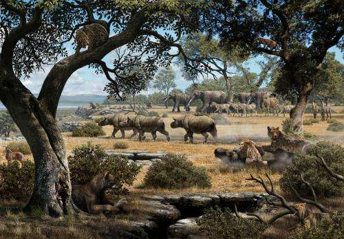 Saber-toothed cats and bear dogs: How they made cohabitation work