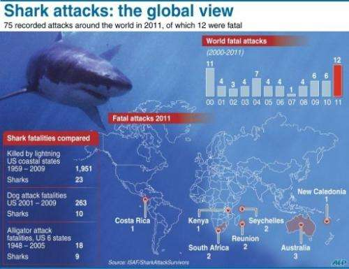 Shark attacks: the global view
