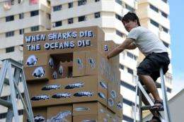 Singapore is the second-largest shark fin trading centre in the world after Hong Kong