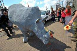 South African protesters stand around a fake rhino during a demonstration in Pretoria