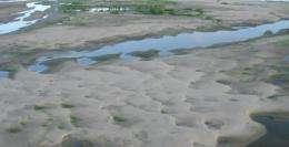 Spillways can divert sand from river to rebuild wetlands