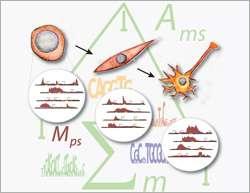 Systems biology meets epigenetics: A computational model explains epigenome dynamics during differentiation