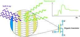 Taking a closer look at molecular electronics