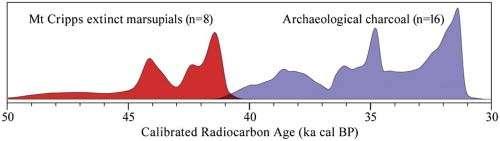 Prehistoric cold case links humans to Tasmanian megafauna extinctions
