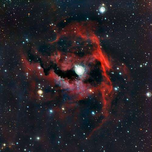 The rich colors of a cosmic seagull
