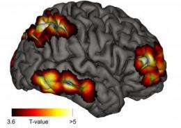The seat of meta-consciousness in the brain