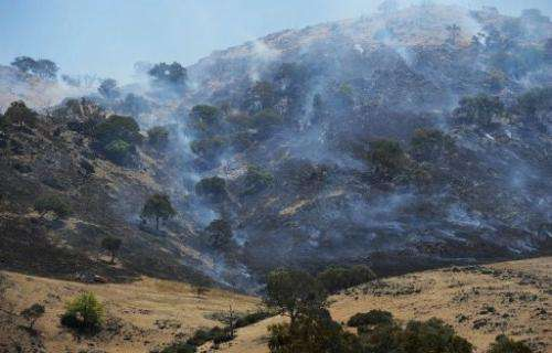 A scrubfire burns on a hillside in the southern region of Australia's New South Wales state on January 11, 2013