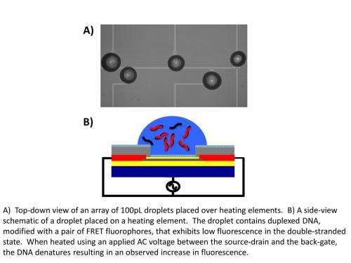 Building a biochemistry lab on a chip