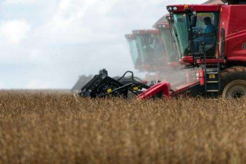 Combine harvesters crop soybeans in Brazil during a demonstration for the press on March 27, 2012