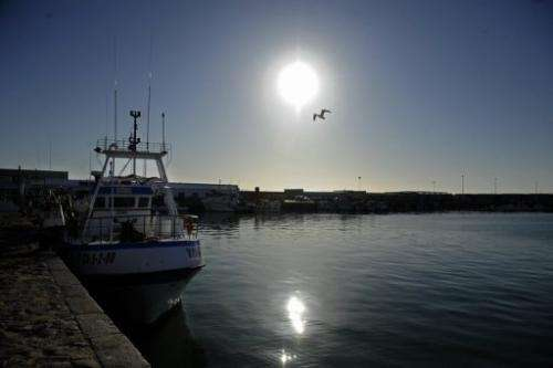 Fishing boats are anchored at the fishing port of Barbate, southern Spain, on January 9, 2012