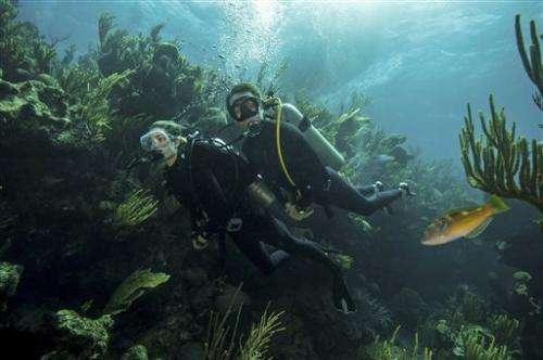 Ocean advocates push for Bermuda marine reserve