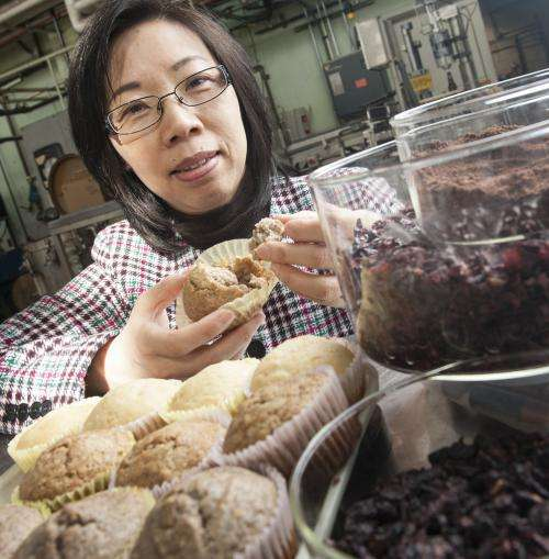 Researchers turn winemaking waste into fiber supplement, food preservative and flowerpots