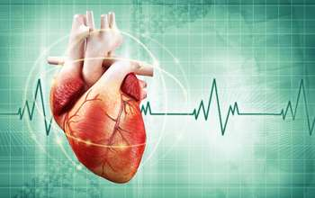Researchers envision switching a heart beat on and off with light