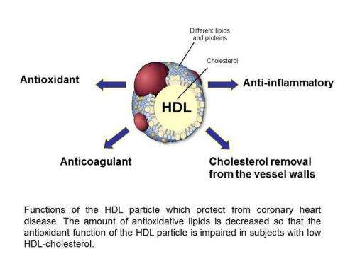 Low HDL-cholesterol--Not quantity, but quality