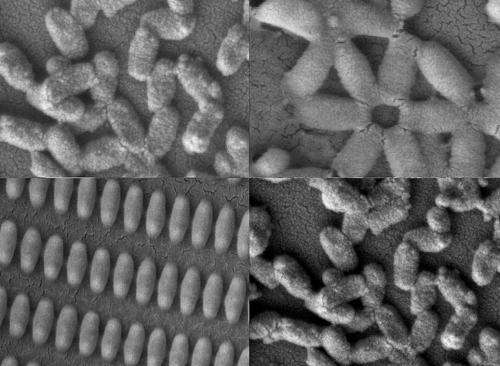 Nanoparticles, made to order—inside and out