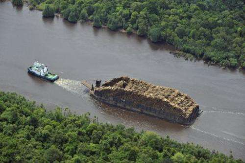 A Greenpeace photo shows a tugboat pulling a barge loaded with logs on a river in South Sumatra on October 16, 2010