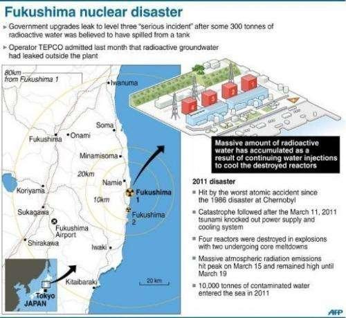 Fukushima nuclear disaster