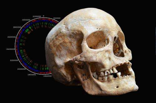Medieval leprosy genomes reveal insights into the history of the disease