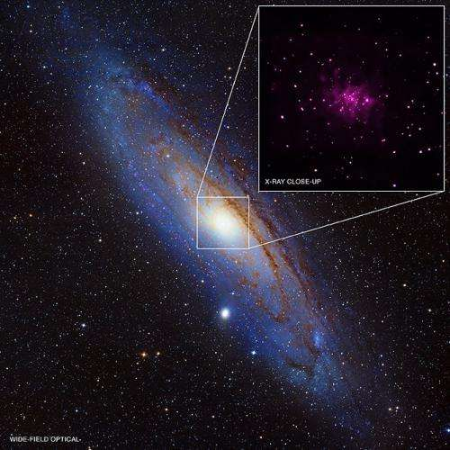 NASA's Chandra turns up black hole bonanza in galaxy next door
