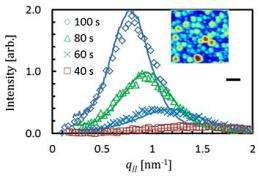New insight into early growth of solid thin films