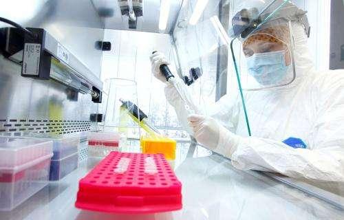 Scientists confirm Justinianic Plague caused by bacterium Yersinia pestis