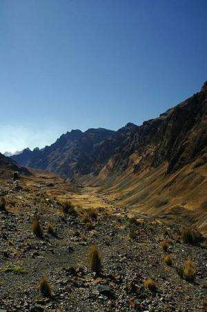 Global Pliocene Cooling Digs Deep Canyons into the Andean Plateau